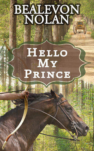 Hello My Prince by Bealevon Nolan - Cover